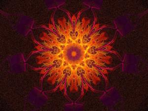 chakras in the body
