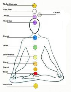 the 12 chakra system