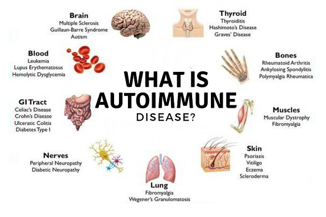 Auotimmune Disease Nutrition